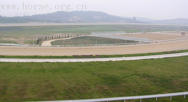 南京国际赛马场,向大家问好