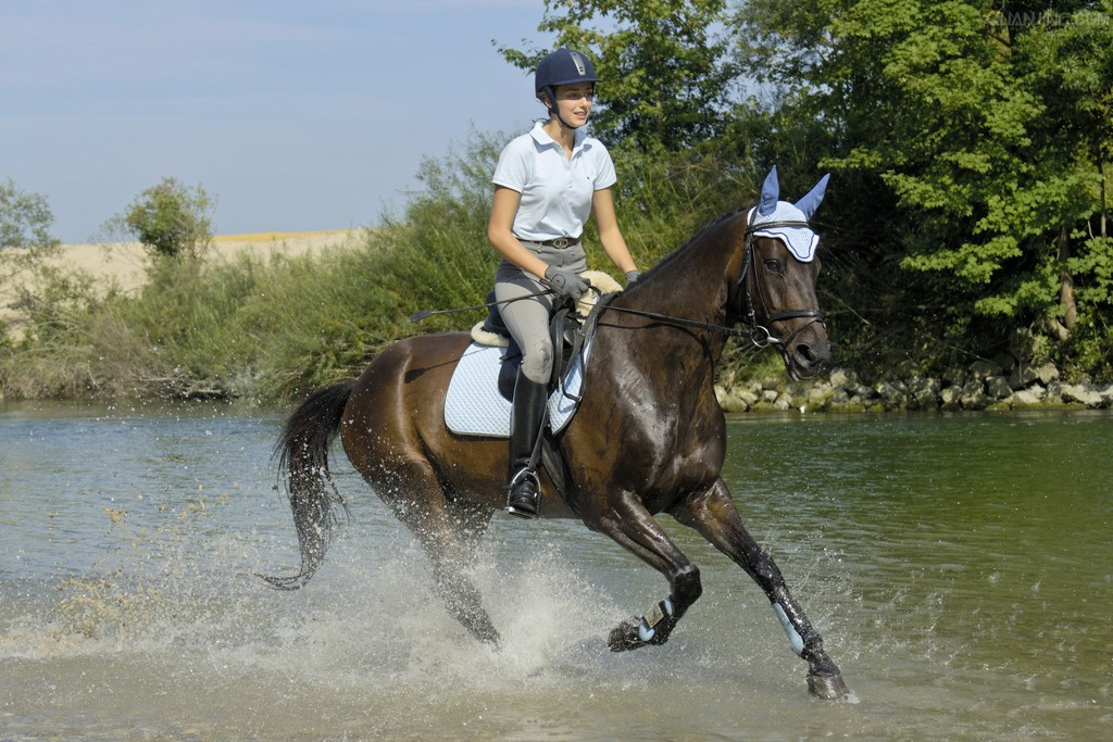 美女骑马奔跑 - 美女骑马 - 中
