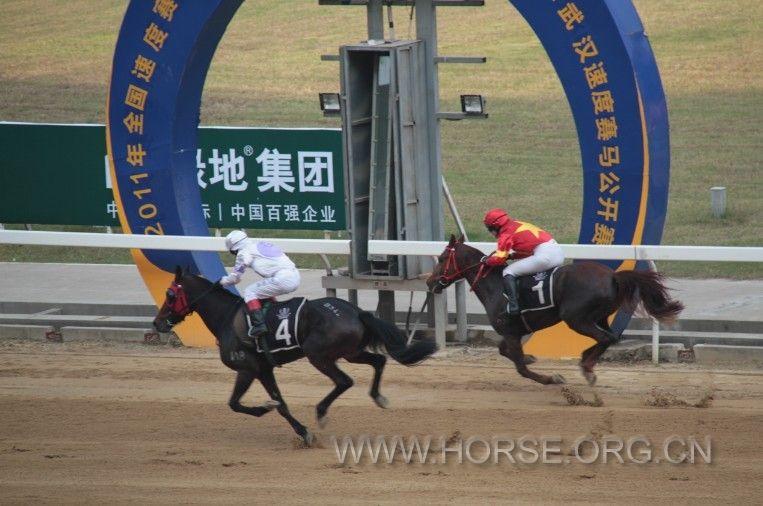 第九届武汉国际赛马节圆满落幕