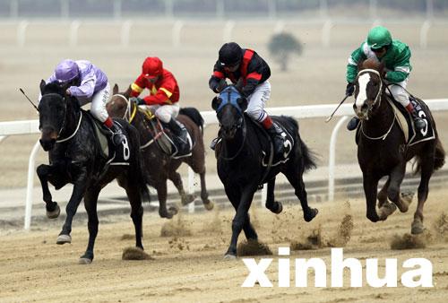武汉国际赛马节将举行法国赛马周