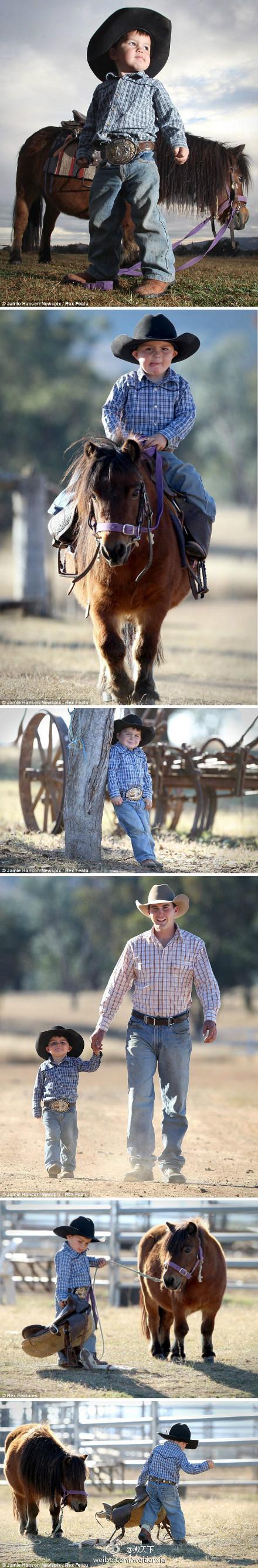 两岁的小牛仔 骑马有模有样
