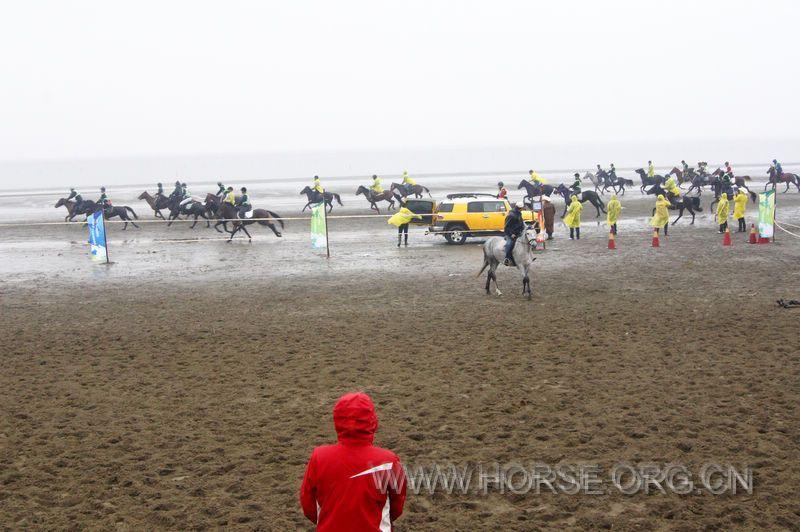 首届启东海滩马友邀请赛风雨中圆满结束
