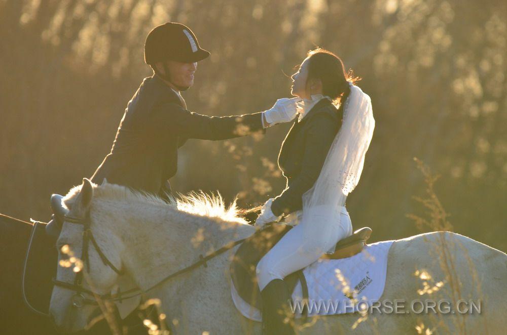 马背婚礼 一生一次的浪漫演绎