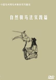 自然驯马法-实践篇