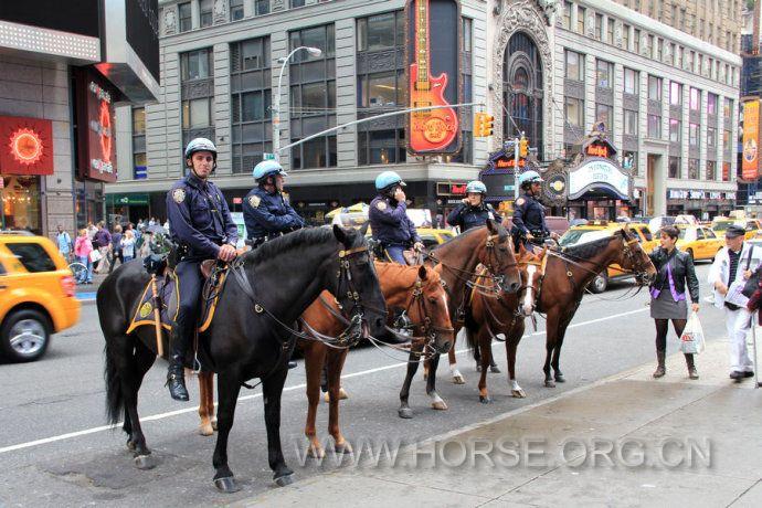 纽约骑警为何受到市民的喜爱与支持