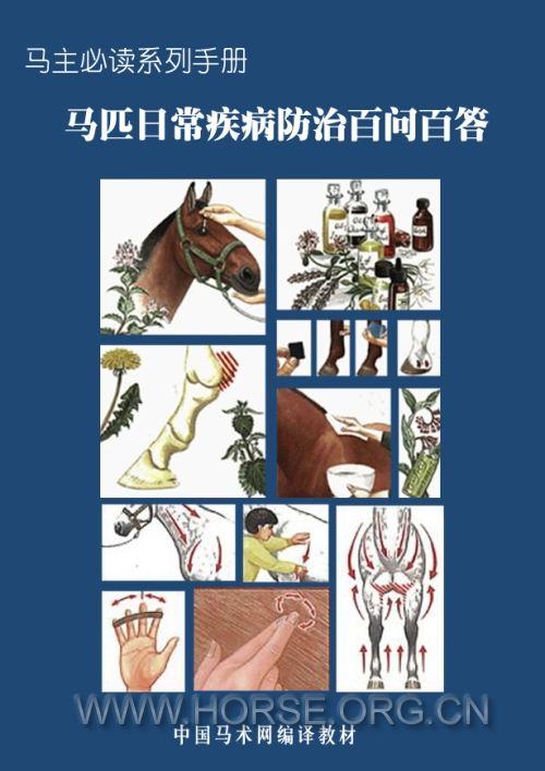 马匹日常疾病防治百问百答