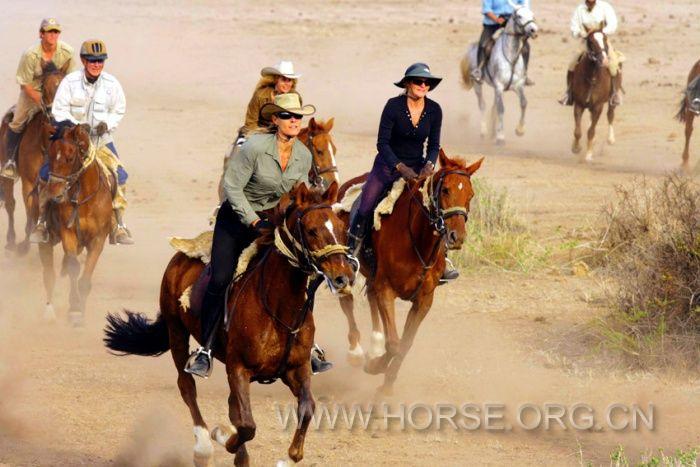 骑马旅行 马背上过新年