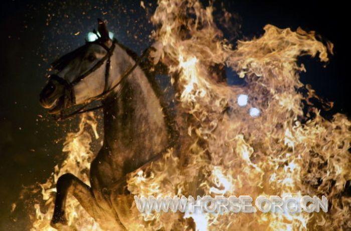 """西班牙""""勇士""""骑马穿烈焰庆节日"""