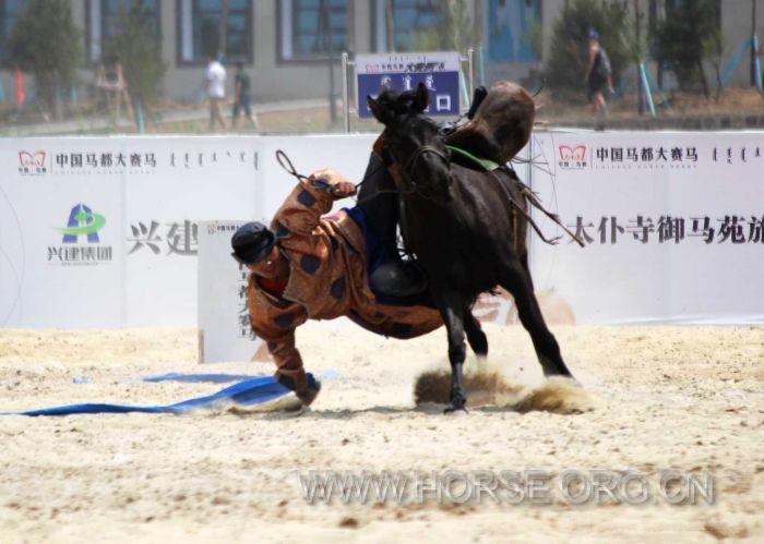 创新型马术竞赛在中国马都拉开帷幕