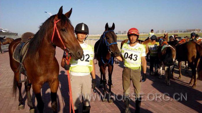 中国马都大赛马一星级耐力赛落幕