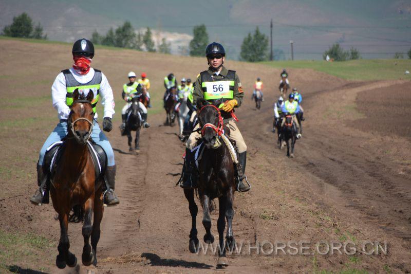 严格近似严苛:国际马联马术耐力赛首次落地中国
